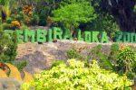 Gembira Loka Zoo: Menyaksikan Ketangkasan dan Kelincahan Para Satwa Langka