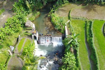 little ubud river tubing, view sawah