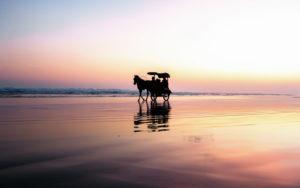Pantai Parangtritis 02