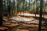 Hutan Pinus Jogja, Spot Foto Hits Kekinian untuk Millennials