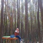 Pesona Hutan Pinus Asri Yang Natural Dengan Polesan Spot Sederhana